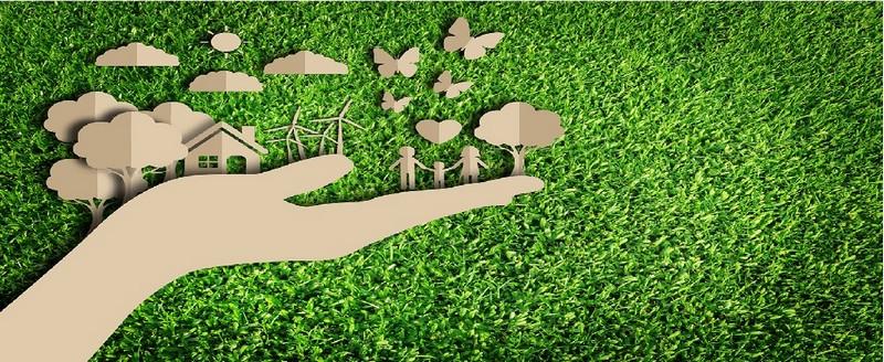 Embalagem sustentável papelão